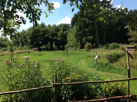 Die Streuobstwiese im Naturgarten