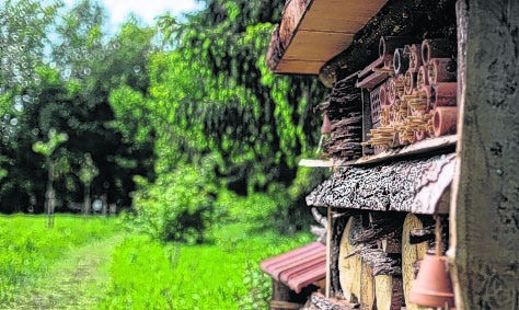 Insektenhotel in NABU Schaugarten