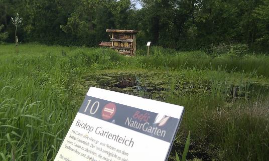 Das Feuchtbiotop im NABU Schaugarten