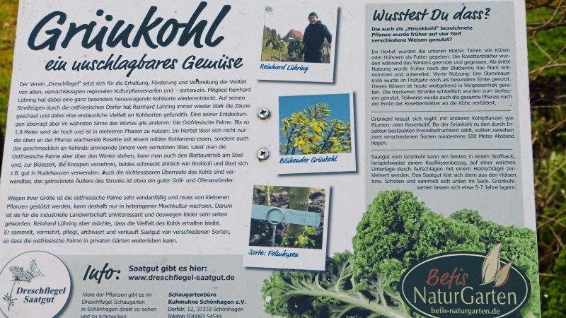 Befis Naturgarten - Lehr- und Schaugarten - • Jahrgang 2017